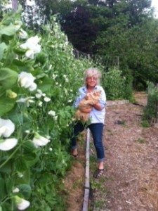 Doris and pea vines